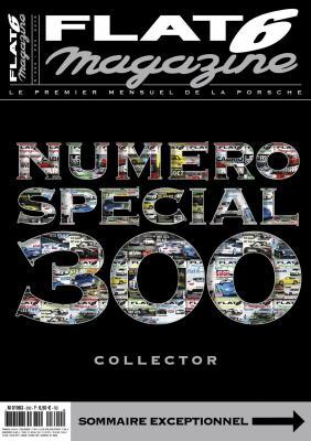 N°300